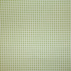 Wishing Well gingham groen PWJM096.green