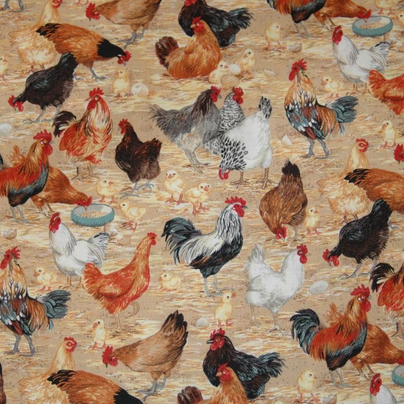 Farm chickens 1052