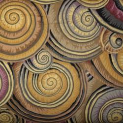 Spiral shells PWPJ073brown