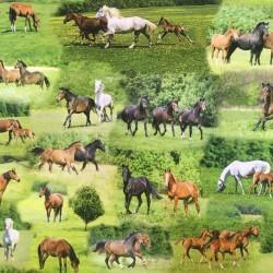 Paard 91299-22