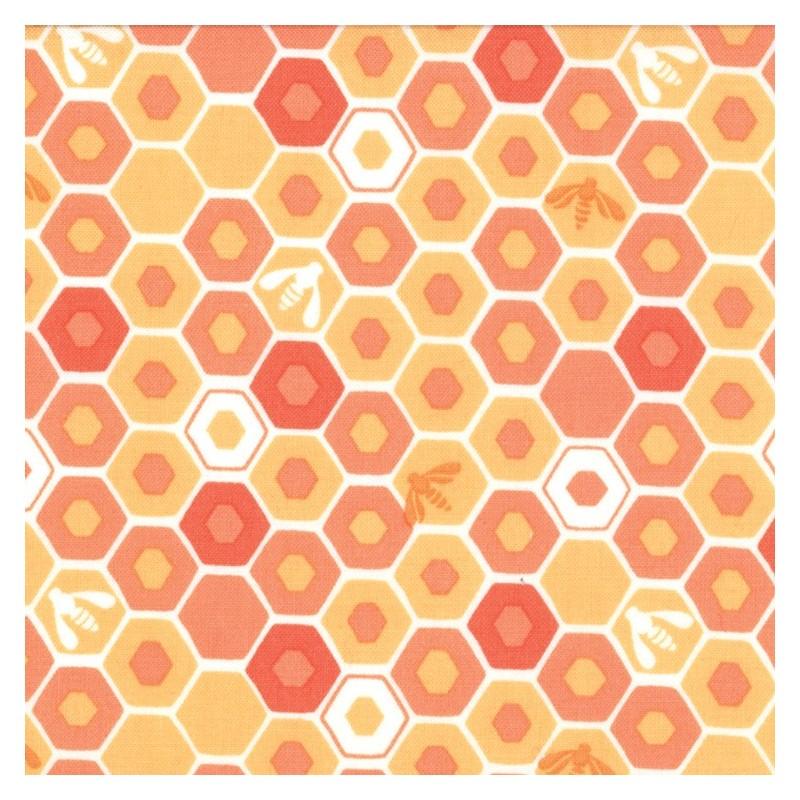 Honey Honey coral 27147 11